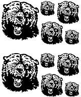Msct-Bear.jpg