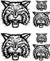 Msct-CatHead.jpg