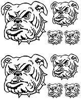 Msct-Dog.jpg