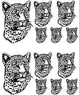 Msct-Leopard.jpg