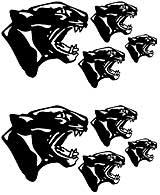 Msct-Panther.jpg